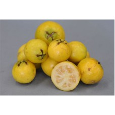 Гуава земляничная лимонная